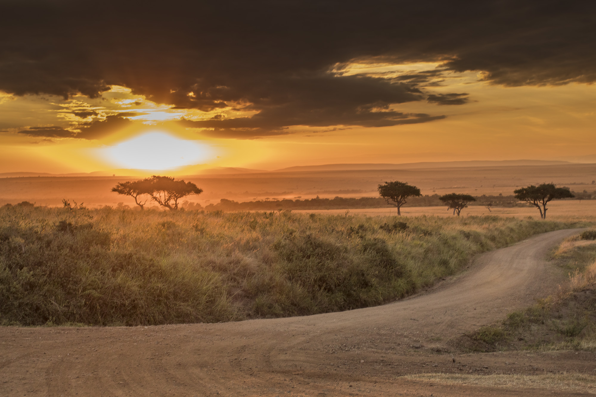 A sunrise over Masai Mara in Kenya