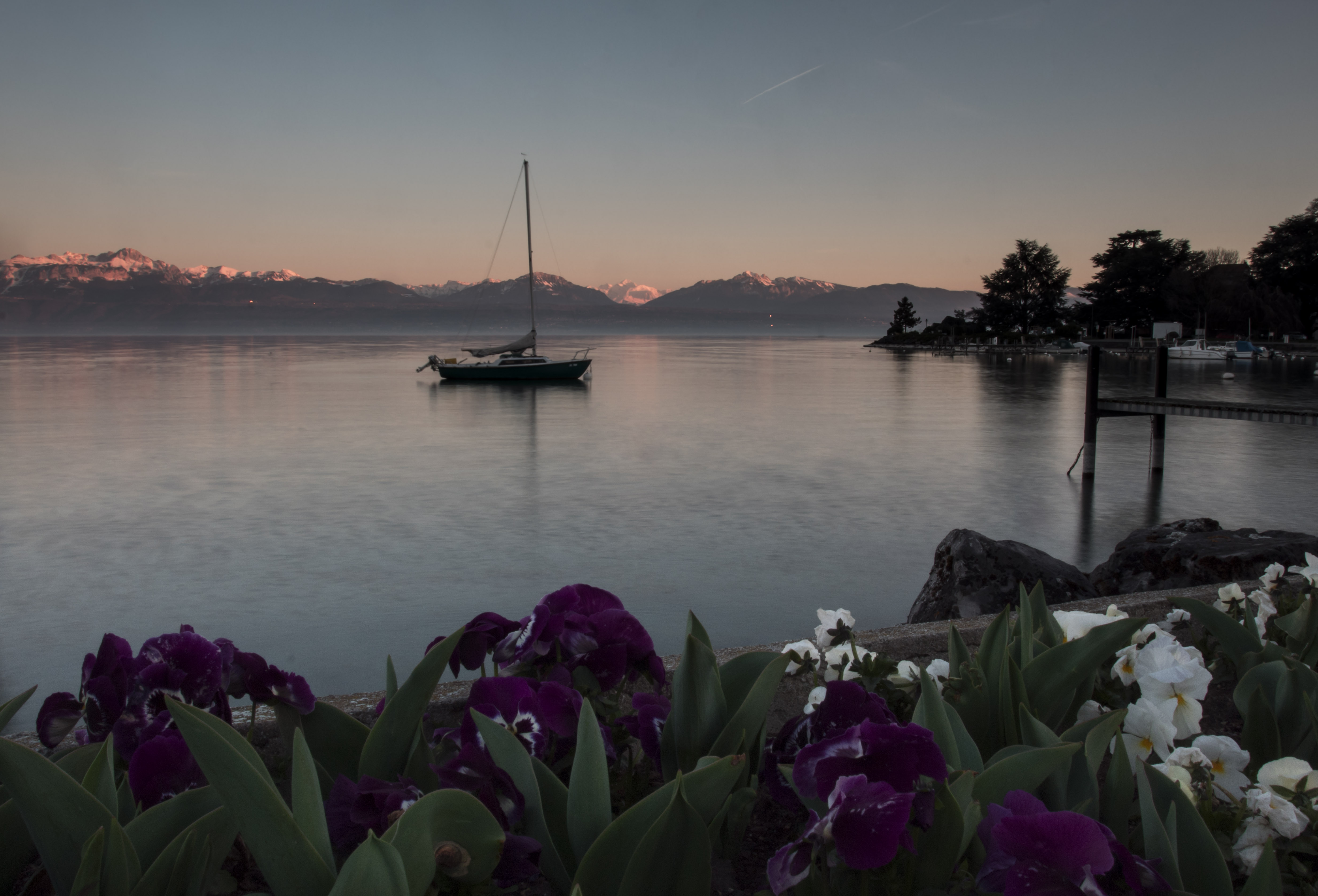 Flowers and a boat in Morges Switzerland